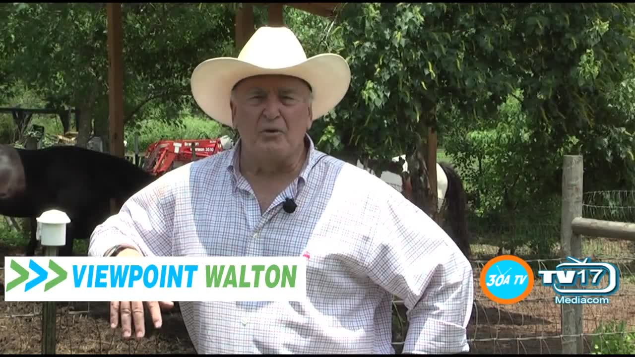 Viewpoint Walton With Art Miller at Alaqua Animal Refuge