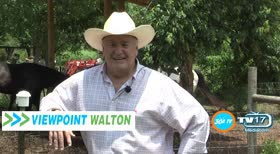 Viewpoint Walton Television Show Sizzle on 30A TV