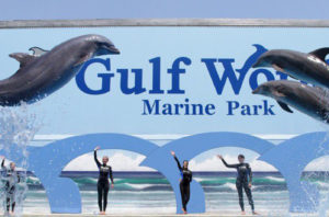 Gulf World Marine Park 15412 Front Beach Rd  Panama City Beach  FL 32413