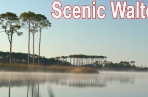 Scenic Walton is focused on preserving our natural beauty amid rapid growth.
