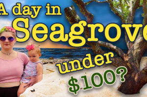 Can 30A Misfits Tour Seagrove for under $100  ?