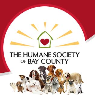 The Humane Society of Bay County Closing Doors Due to Economy