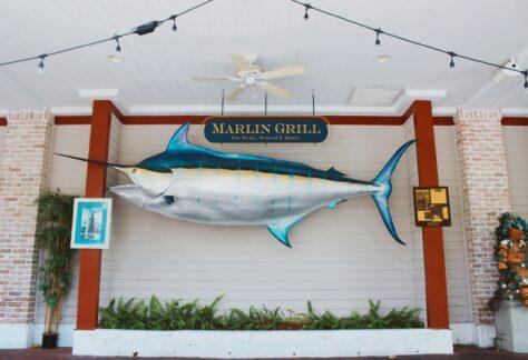 Marlin Grill Fish