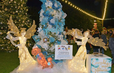 Christmas is coming to ECCAC …It's Adopt-a-Family time
