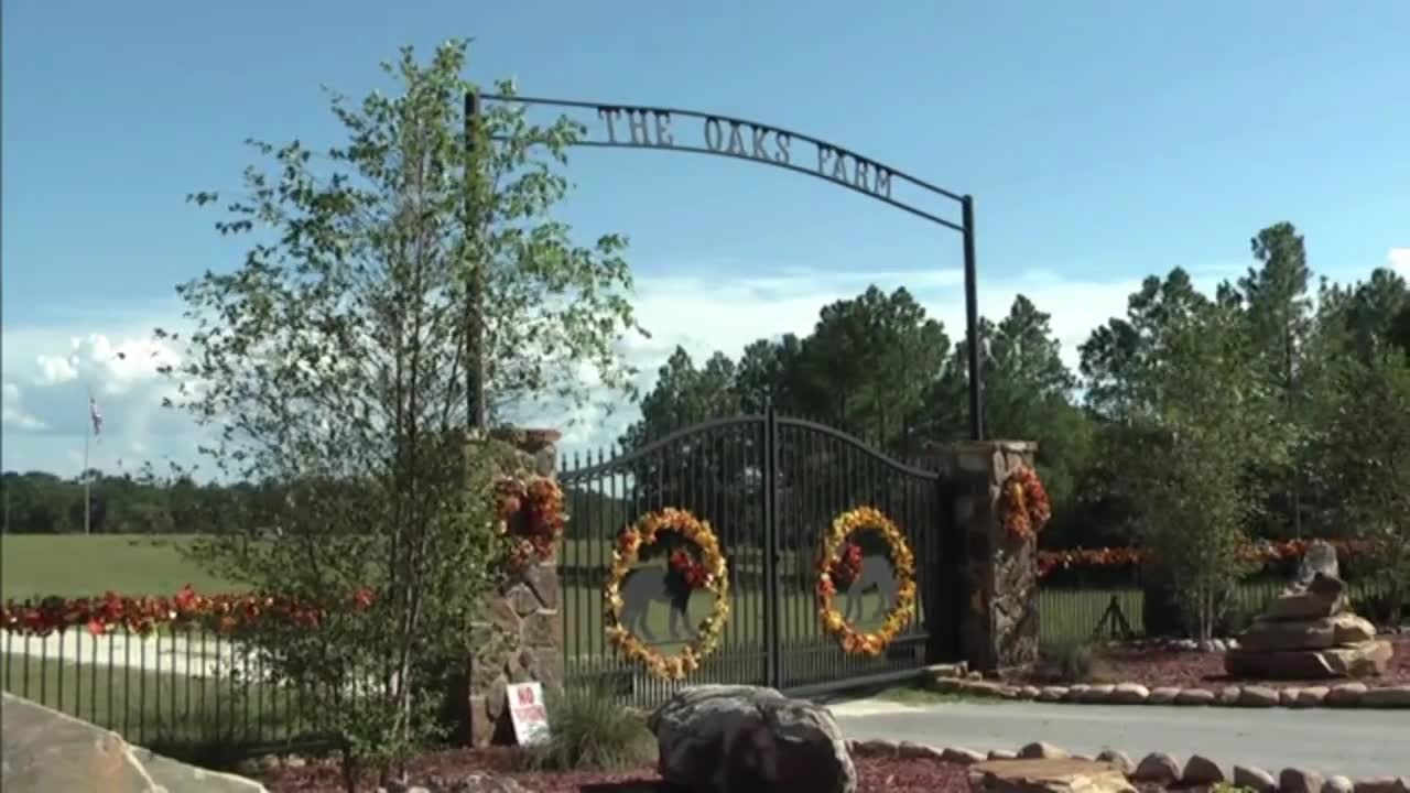 Seacrest Wolf Preserve Video Washington County FL
