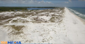 Flight over Eden State Park and Grayton Beach Florida