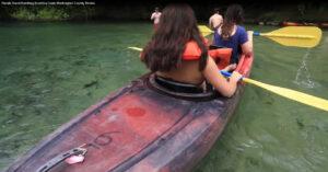 Florida Travel Paddling Econfina Creek Washington County Florida