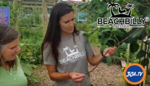 BeachBilly Lifestyle From the Ground Up Community Garden