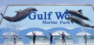 Gulf World Marine Park 15412 Front Beach Rd  Panama City Beach  FL 32413