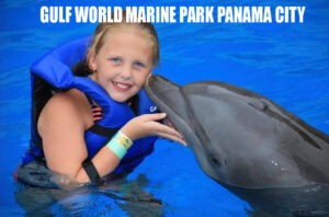 Gulf World Marine Park Open Daily 15412 Front Beach Road Panama City Beach  Florida