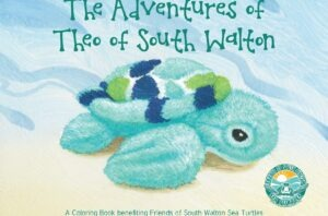 Friends of South Walton Sea Turtles THEO Kids Party