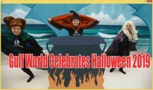 Gulf World Celebrates Halloween 2019