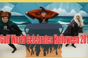 Gulf World Celebrates Halloween 2019