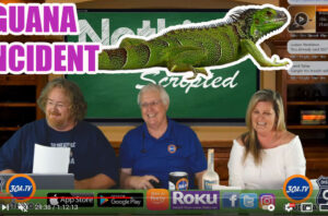 #Floridaman  claims 'stand your ground' defense in iguana killing Nothing Scripted